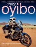 Crazy Oyibo book summary, reviews and download