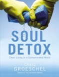 Soul Detox book summary, reviews and download