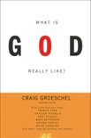 What Is God Really Like? Expanded Edition book summary, reviews and downlod