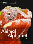 Animal Alphabet from A to I book summary, reviews and download