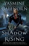 Shadow Rising book summary, reviews and downlod