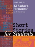 """A Study Guide for ZZ Packer's """"Brownies"""" book summary, reviews and downlod"""