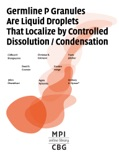 Germline P Granules are Liquid Droplets that Localize by Cotrolled Dissolution / Condensation book summary, reviews and download