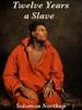Twelve Years a Slave book image