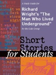 """A Study Guide for Richard Wright's """"The Man Who Lived Underground"""" book summary, reviews and downlod"""