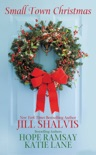 Small Town Christmas book summary, reviews and downlod