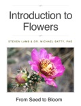 Introduction to Flowers book summary, reviews and download