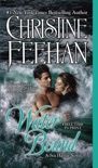 Water Bound book summary, reviews and downlod