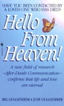 Hello from Heaven book summary, reviews and download