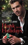 Hunk for the Holidays book summary, reviews and downlod