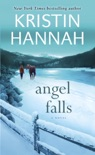Angel Falls book summary, reviews and downlod