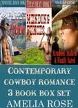 Contemporary Cowboy Romance 3 Book Box Set book summary, reviews and download