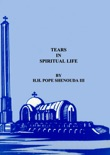 Tears in Spiritual Life book summary, reviews and download