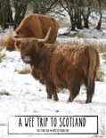 A wee trip to Scotland book summary, reviews and download