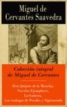 Colección integral de Miguel de Cervantes resumen del libro