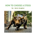 How To Choose A Stock book summary, reviews and download