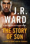 The Story of Son book summary, reviews and downlod