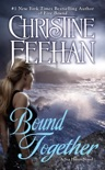 Bound Together book summary, reviews and downlod