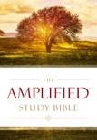 The Amplified Study Bible, eBook book summary, reviews and download