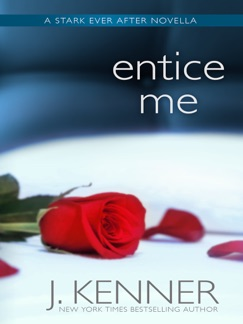 Entice Me E-Book Download