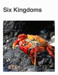 Six Kingdoms book summary, reviews and downlod
