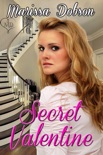 Secret Valentine book summary, reviews and download