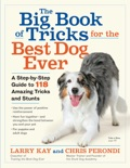 The Big Book of Tricks for the Best Dog Ever book summary, reviews and download