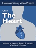 Chest: The Heart e-book