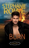 Burn book summary, reviews and downlod