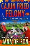 Cajun Fried Felony book summary, reviews and downlod