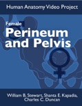 Perineum and Pelvis: Female book summary, reviews and download