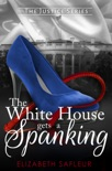 The White House Gets A Spanking book summary, reviews and downlod