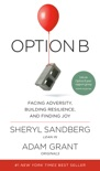 Option B book summary, reviews and downlod