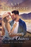 Borrowing Second Chances book summary, reviews and downlod