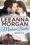 Montana Brides Boxed Set (Books 4-6) book summary, reviews and downlod