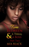 Torn Between A Thug & A Boss 2 book summary, reviews and download