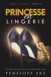 Princesse en Lingerie resumen del libro