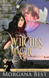 Witches' Magic book summary, reviews and downlod