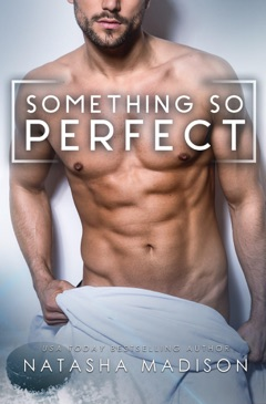 Something So Perfect E-Book Download