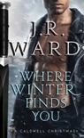 Where Winter Finds You book summary, reviews and downlod