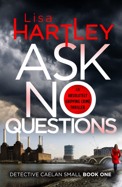 Ask No Questions by Lisa Hartley Book Summary, Reviews and E-Book Download