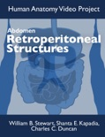Abdomen: Retroperitoneal Structures book summary, reviews and download
