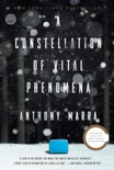 A Constellation of Vital Phenomena book summary, reviews and download