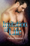 Imitation of Life book summary, reviews and download