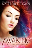 Awaking book summary, reviews and download