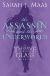 The Assassin and the Underworld book summary, reviews and downlod