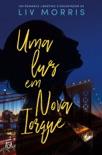 Uma Luz em Nova Iorque resumen del libro