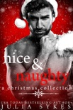 Nice & Naughty book summary, reviews and downlod