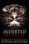 Indebted Epilogue book summary, reviews and downlod