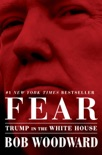 Fear book summary, reviews and download